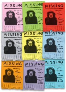 missing fern