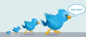 Twitter-leader